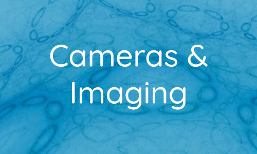 Cameras and Imaging